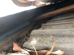 Old Shake Roof under Steel